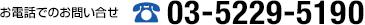 03-5229-5190
